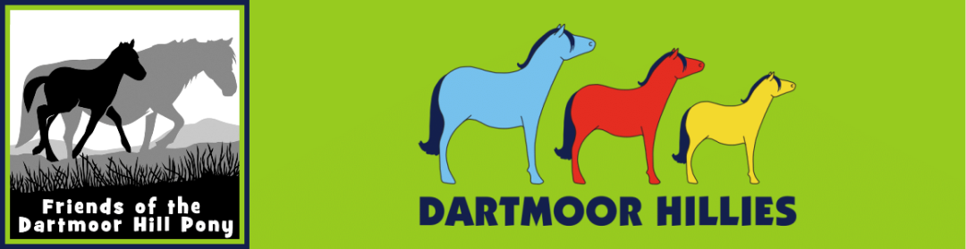 Friends of the Dartmoor Hill Pony  & Dartmoor Hillies Logo